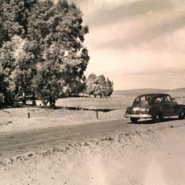 Historia de la Avenida Trolón de Pehuen Co.