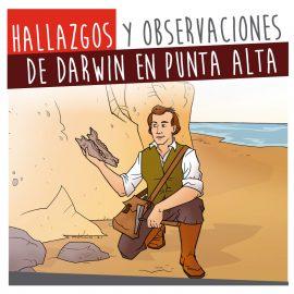 Hallazgos y observaciones de Darwin en Punta Alta.